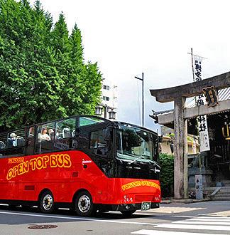 후쿠오카 오픈탑 버스 반짝 야경 코스