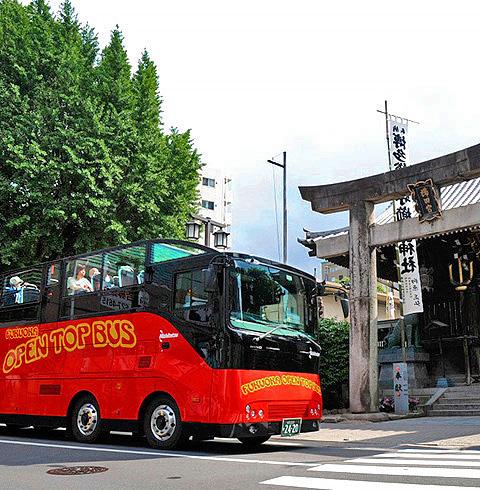 일본 후쿠오카 오픈탑 버스 반짝 야경 코스