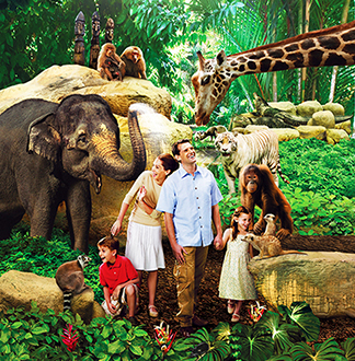 싱가포르 동물원 입장권 + 트램 탑승권