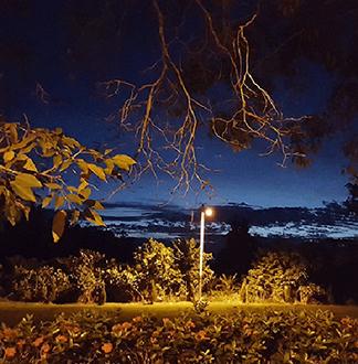 쿠알라룸푸르 반딧불 투어