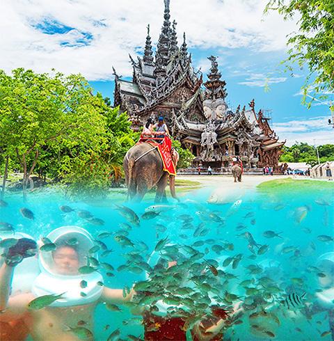태국 파타야출발 산호섬 + 진리의 성전 1일투어 (픽업/샌딩 포함)