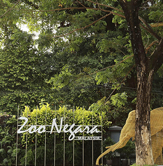 쿠알라룸푸르 네가라 국립 동물원 입장권