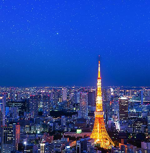 일본 도쿄 타워 전망대 입장권