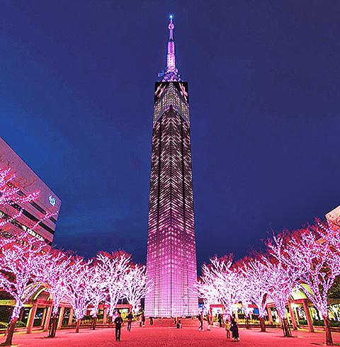 일본 후쿠오카 타워 입장권