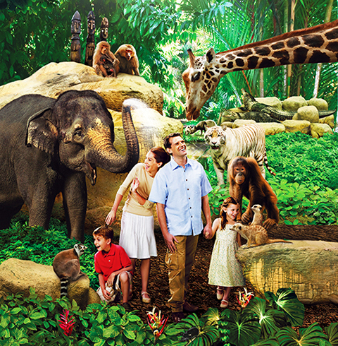 싱가포르 만다이파크 동물원 + 트램 티켓