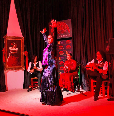 스페인 그라나다 플라멩고 알보레아 예술 공연 입장권