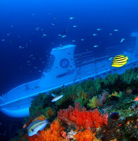 제주 서귀포 잠수함 이용권